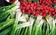 Ранні овочі – користь чи небезпека для здоров'я