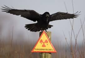 Особливості радіаційного контролю металобрухту