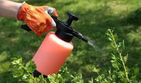 Як вберегтися від засобів захисту рослин!
