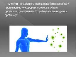 1 березня- Всесвітній день імунітету