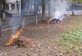 Не спалюйте суху траву та лисття